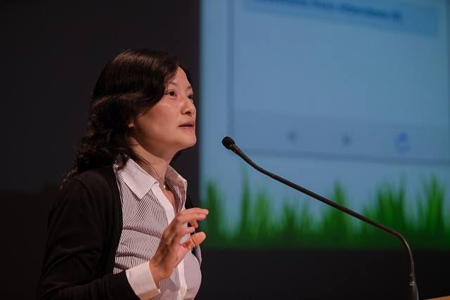 Prof. Yuanyuan (YY) Zhou