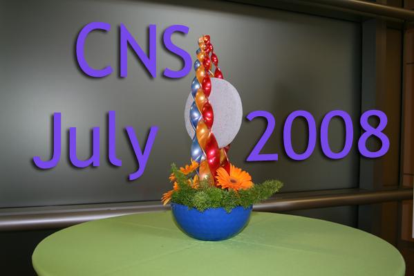 CNS RR 2008 07 13